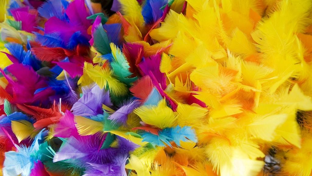 Färgglada påskfjädrar