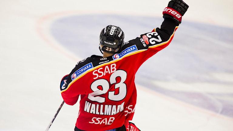 Luleå Hockeys Lucas Wallmark jublar.