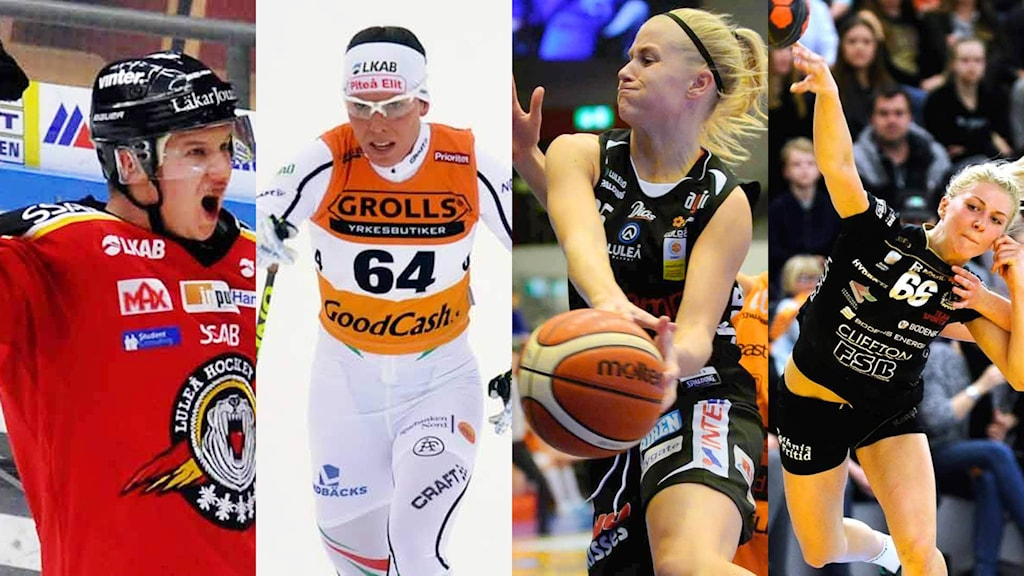 Montage: Luleå Hockeys Toni Rajala, Piteå Elits Charlotte Kalla, Luleå Baskets Julie Vanloo och Boden Handbolls Sara Nordström.