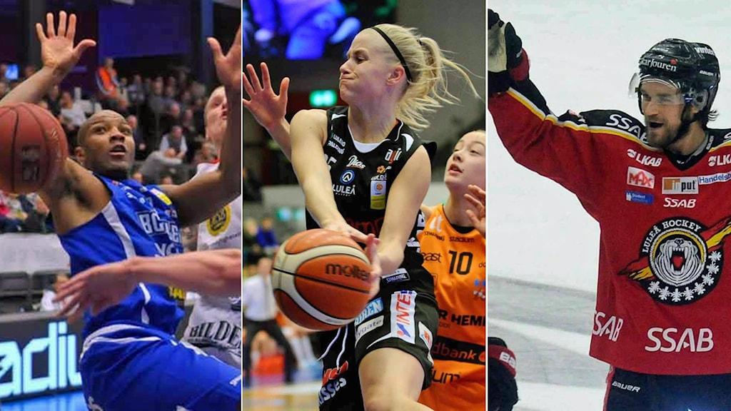 BC Luleå, Luleå Basket och Luleå Hockey.