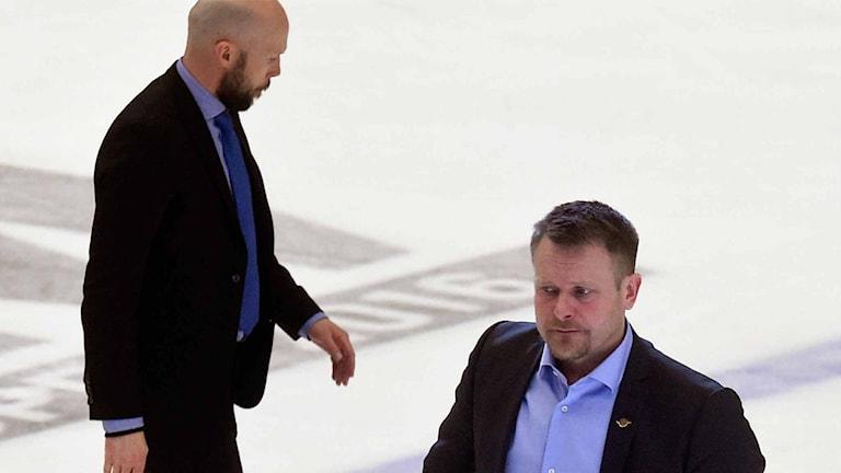 Luleå Hockeys tränare Anders Burström och Joakim Fagervall.