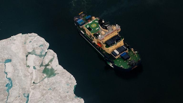 The Swedish icebreaker Oden. Photo: Ida Kinner.