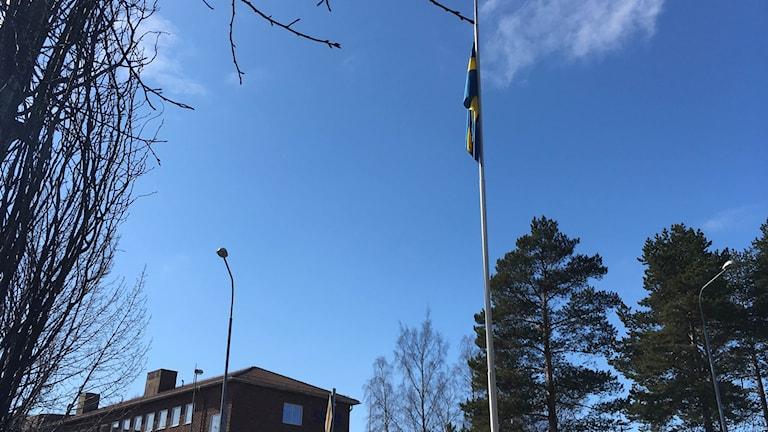 Flaggan på halvstång utanför SSAB:s kontor i Luleå.