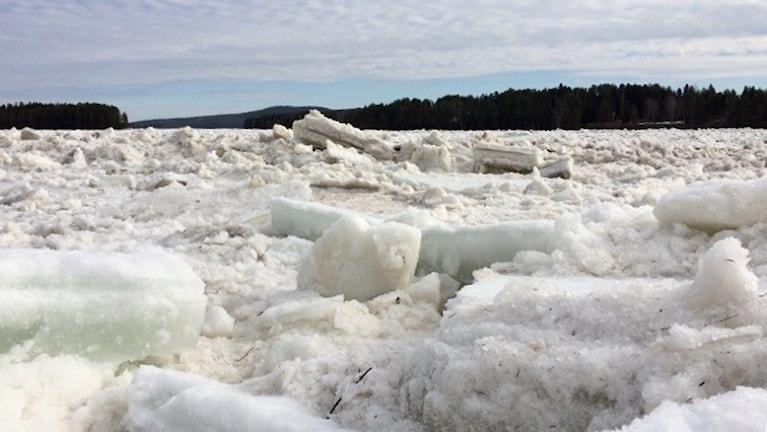 Islossning i Svanstein utanför Övertorneå, 4 maj 2016.