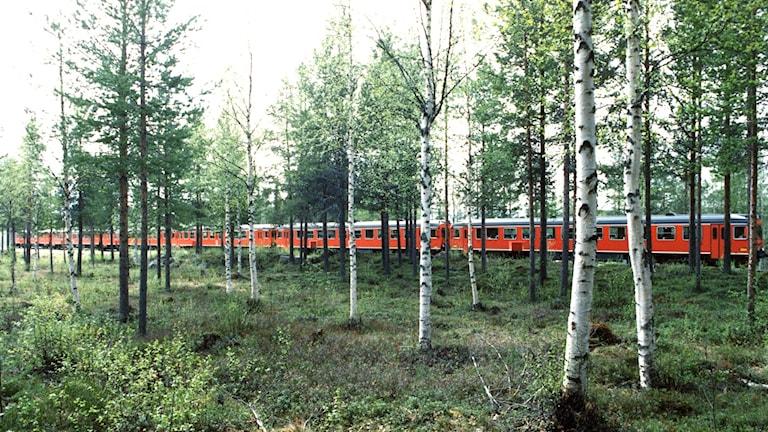 Tåg på Inlandsbanan