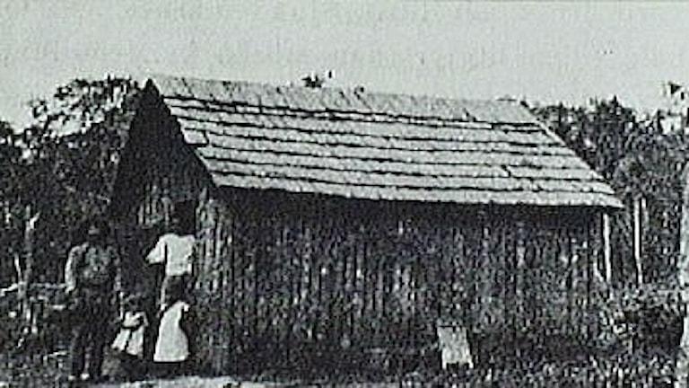 Nybygge i Brasilien av emigranter från Sverige 1912