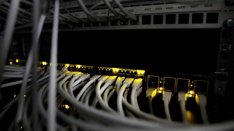 Massor av nätverkskablar inkopplade i serverhall.