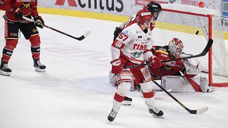 Luleå Hockey-Timrå