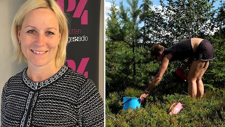 Kiropraktorn Cecilia Bergström om ryggproblem vid bärplockning.