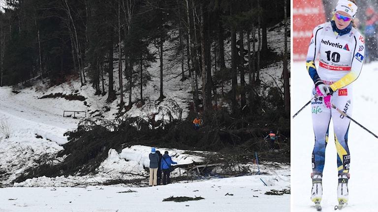 Nedblåsta träd över skidspåret i Oberstdorf och Jenni Öberg.