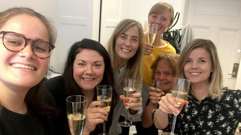 Fredspristagare: Victoria Frisk Garcia, Elin Liss, Karin Lidström, Gabriella Irsten, Jane Földes, Malin Nilsson vid IKFF.
