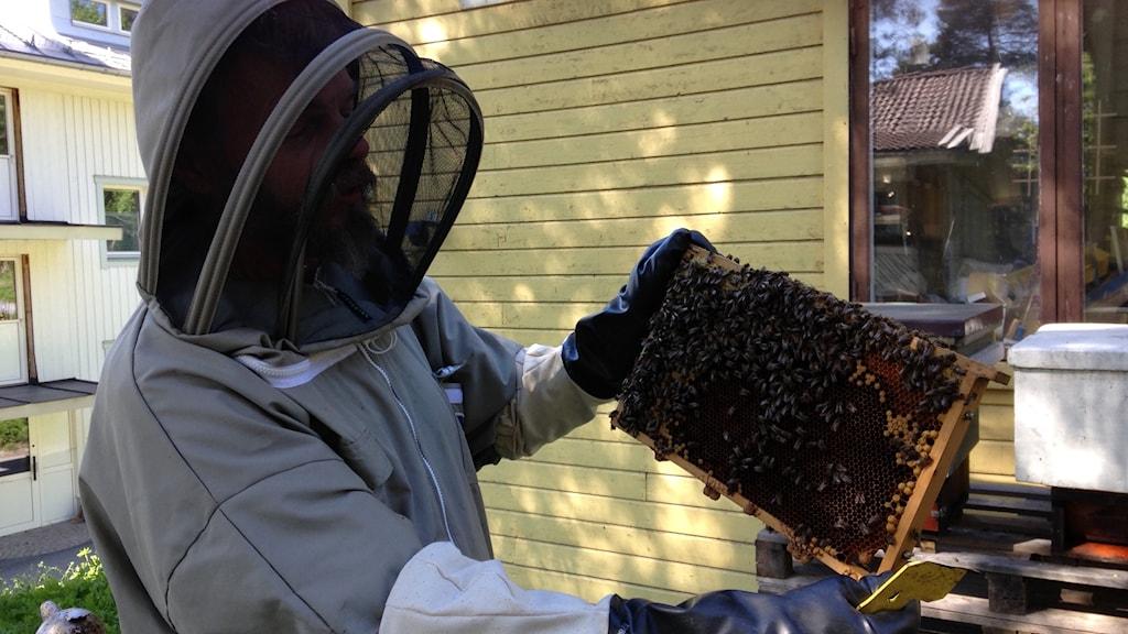 Erik Heedman biodlare med en honungsram