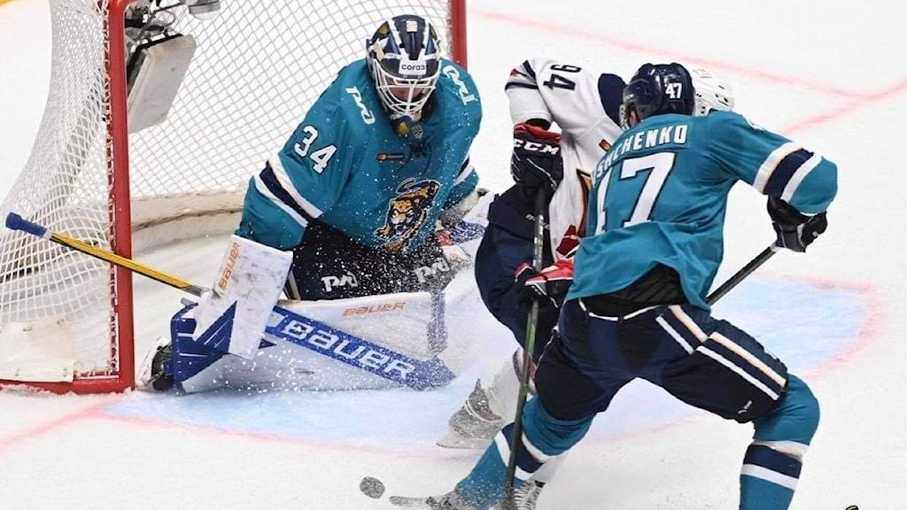 Joel Lassinantti målvakt i KHL klubben Sochi