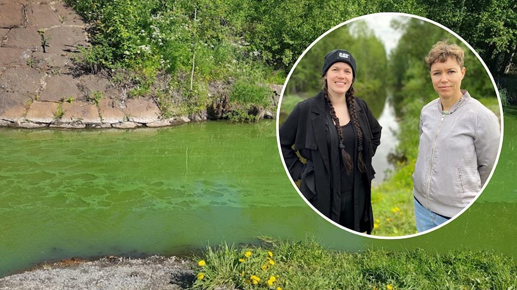 Anna Munkhammar och miljökonsulten Sara Chlot och det gröna vattnet i Svartbyträsket