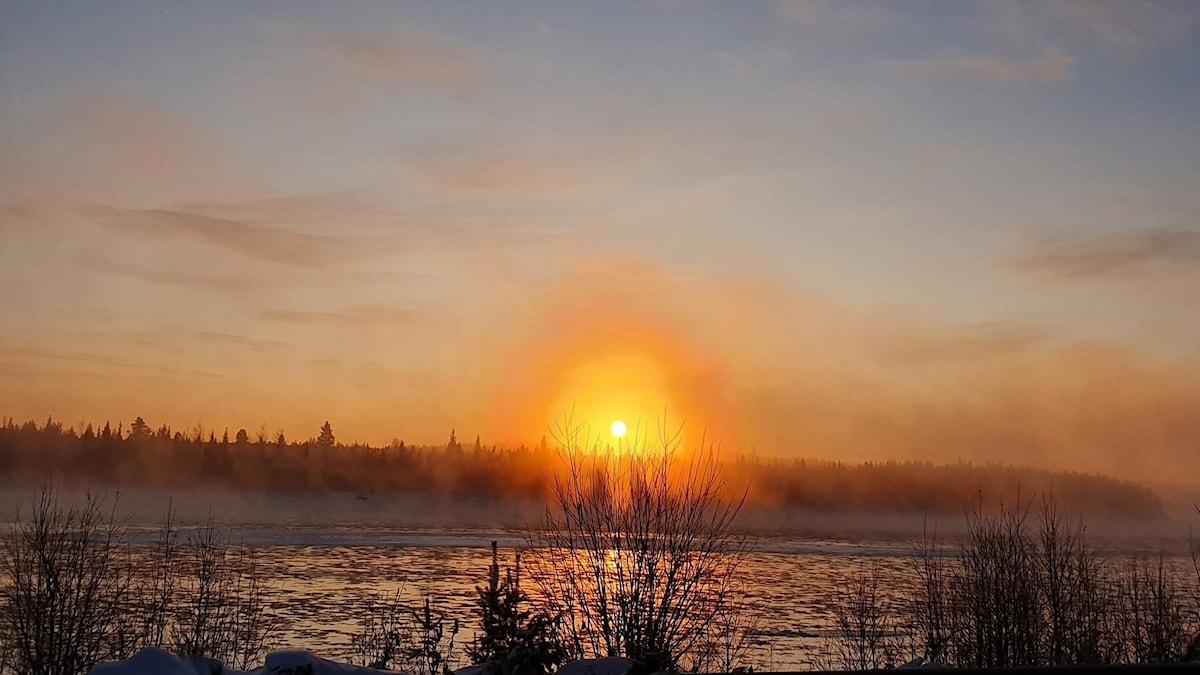 Torneälv Lovikka