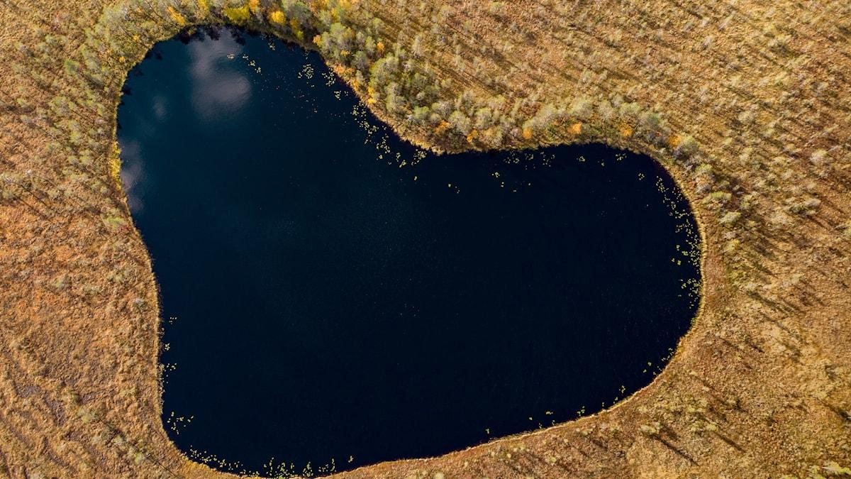En hjärtformad liten sjö sedd från ovan.