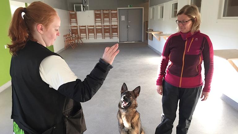 Eleven Sanna Wikström tränar den blivande tjänstehunden Luka under överinseende av läraren Mia Henriksson.