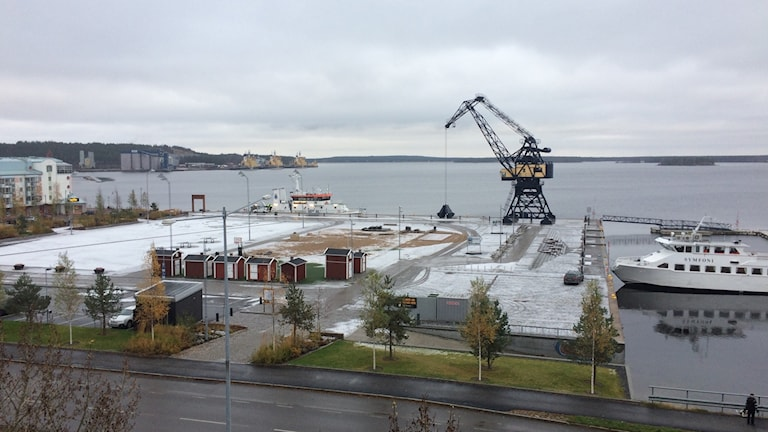 En gråväderdag i Luleå. Foto: Anneli Lindbäck/ Sveriges Radio