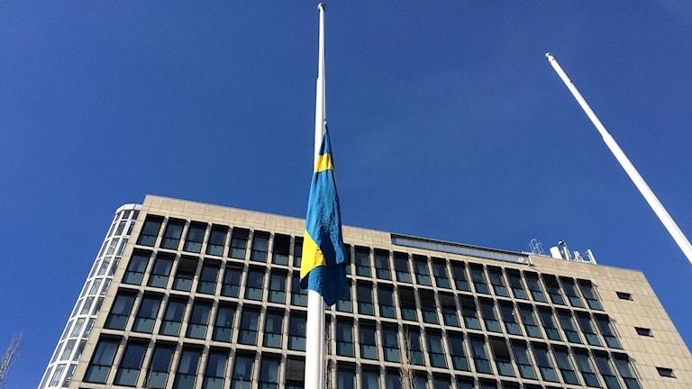 Flagga på halvstång stadshuset i Luleå