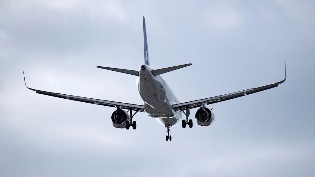 SAS-flygplan i luften.