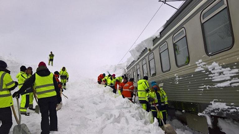 Ett 40-tal personer från LKAB skottar fram tåget.
