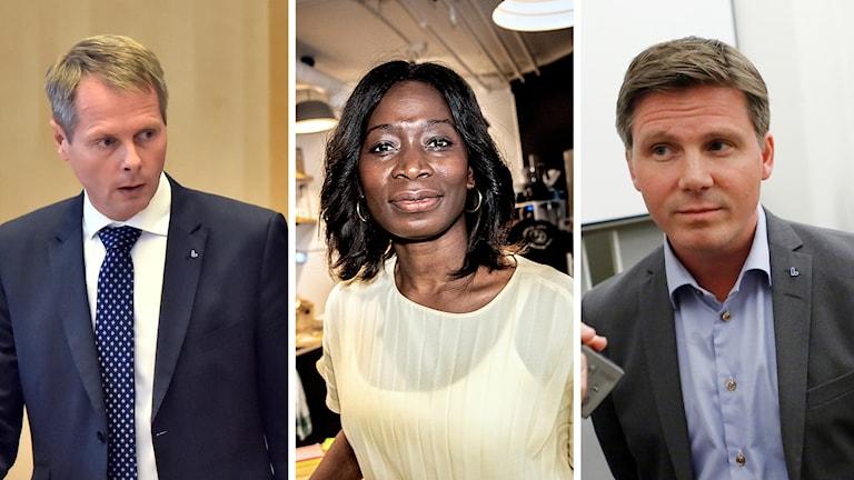 Christer Nylander, Nyamko Sabuni, Erik Ullenhag.
