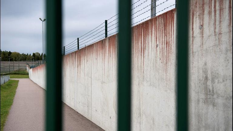 Vy genom gallren på en fängelseanstalt.