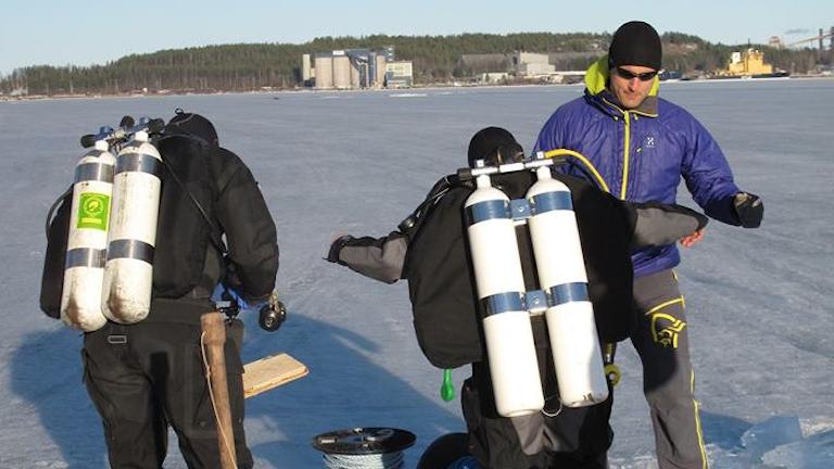 Dykarklubben Polar