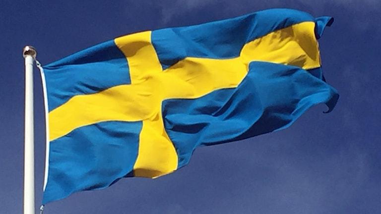 Sveriges nationaldag uppmärksammas på olika vis runt om i landet.