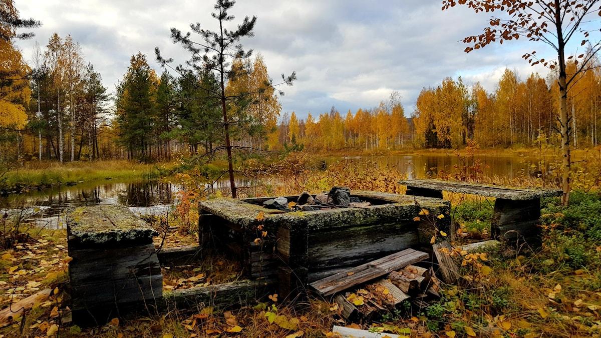 Dennis Krogh-Vennemo har fotat hösten i Vidsel