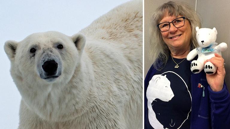 Isbjörnshanne och Christina Paulin Casplin.
