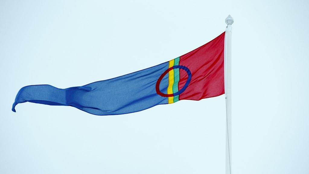 Bild på den samiska flaggan i vimpelformat.