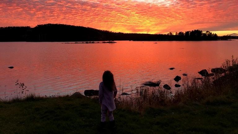 En flicka i siluett tittar ut över en solnedgång i rosa som speglas i vattnet.