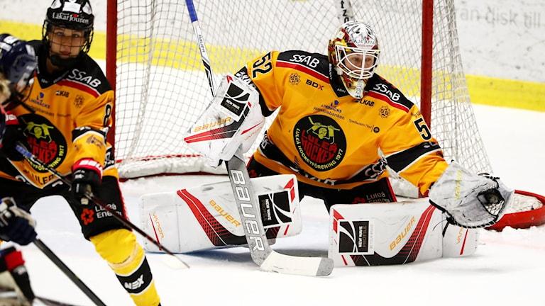 Luleå Hockey/MSSK:s målvakt Sara Grahn