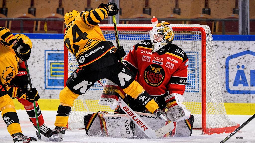 Jesper Wallstedt Luleå Hockey