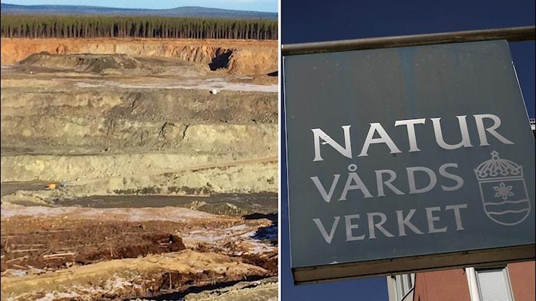 gruvområdet Kaunisvaara naturvårdsverket