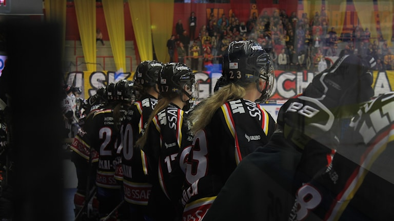 Luleå hockey/MSSK