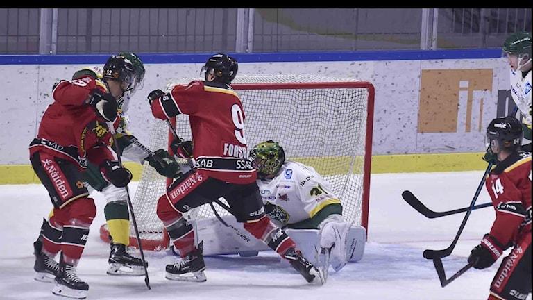 Luleå Hockeys Johan Forsberg mot Björklöven