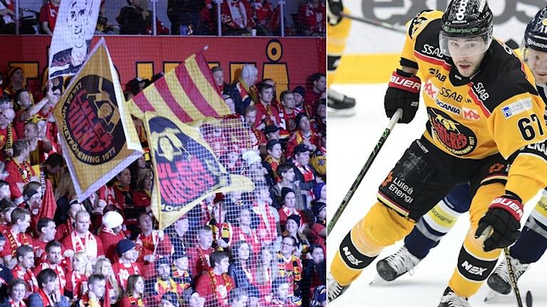 Det blir en senare start på slutspelet för Luleå Hockey.