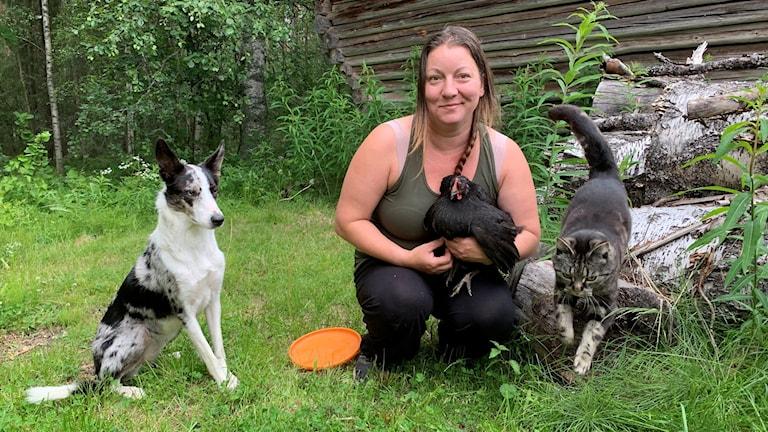 Miriam Jaakola på gården i Boden tillsammans med hönan Prillan, katten Alice och hunden Zelda.