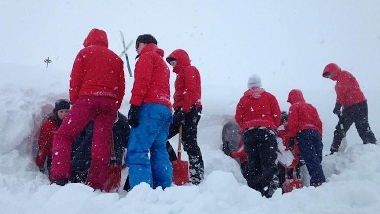 Gymnasieelever från hotell- och turismprogrammet bygger bivack i snöoväder vid Nordanjaurestugan.