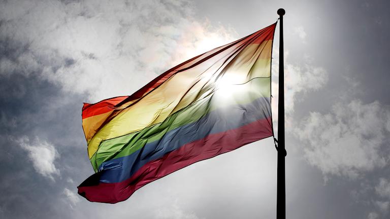 Regnbågsflagga vajar i solljus.
