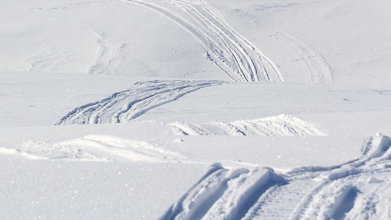 Spår av snöskotrar i snön.