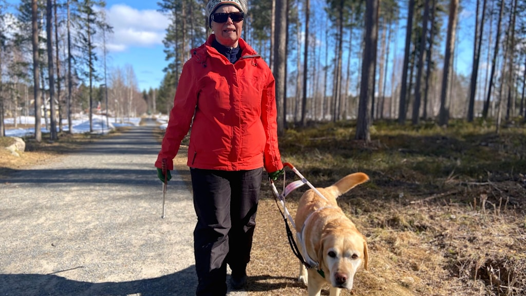 Margareta Pettersson i Boden.