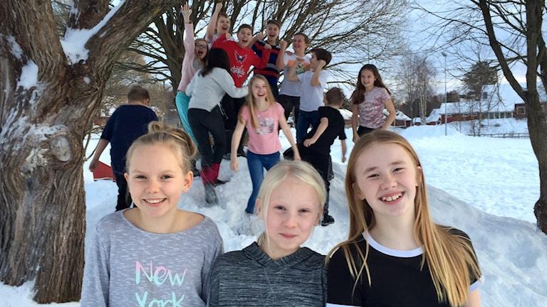 """Elin Pennervall, Ebba Enberg och Julie Blom i klass 5 på Alviksskolan i Luleå vann SLU:s Sverigetävling """"Gilla Naturen""""."""