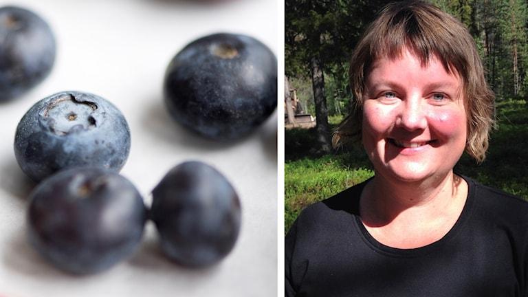 Eva Gunnare tipsar om recept med blåbär.