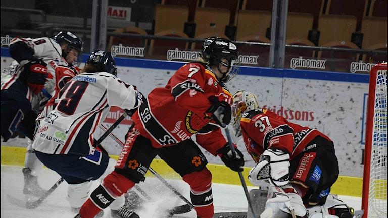 Luleå Hockey/MSSK - Linköping HC