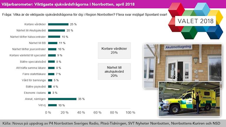 Grafik: Viktigaste sjukvårdsfrågorna i Norrbotten, april 2018: Kortare vårdköer och närhet till akutsjukvård.