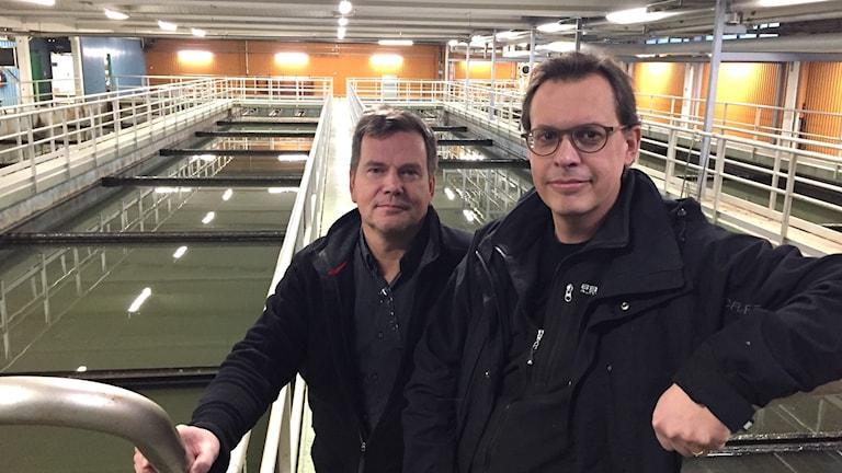 Patrik Fahlén, enhetschef Svedjans reningsverk och Magnus Bäckström, teknisk expert och ansvarig för större projekt.