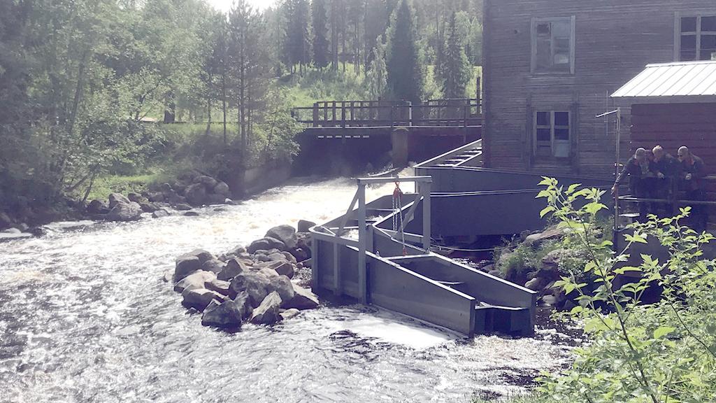 Fiskvägen i Nybyn i Alteräven.